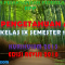 Download RPP IPA Kelas IX K13 Edisi Revisi 2018 Semester 1
