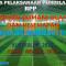 Download RPP PJOK Kelas XII Kurikulum 2013 SMA/SMK Revisi 2018