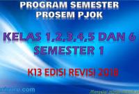 Promes PJOK Kelas 1,2,3,4,5 dan 6 K13 Revisi 2018 Semester 1