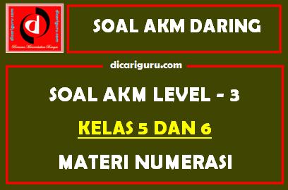 Soal AKM Level 3 Kelas 5 dan 6 Materi Numerasi