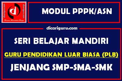 Download Modul PPPK / ASN Guru Pendidikan Luar Biasa (PLB)